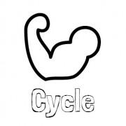 Cycle1337