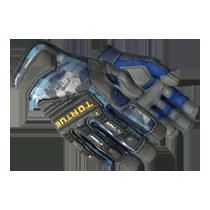 专业手套(★) | 大腕 (略有磨损)